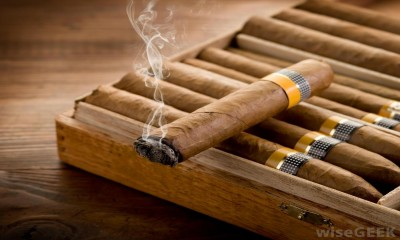 Drop that Cigar ­ It is as harmful as smoking a cigarette